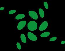 Logo_SystemischeBeratung